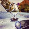 Abgas-Skandal – das Leid von VW, die Freud von Mercedes-Benz?
